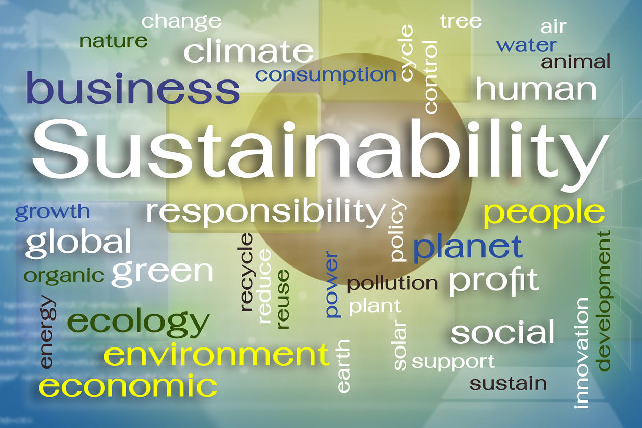 sustainable development goals to meet global development sustainable development