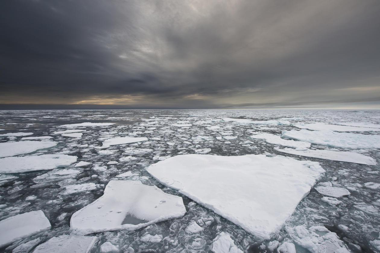 Ice flakes adrift in the Arctic seas under a grey-clouded sky.