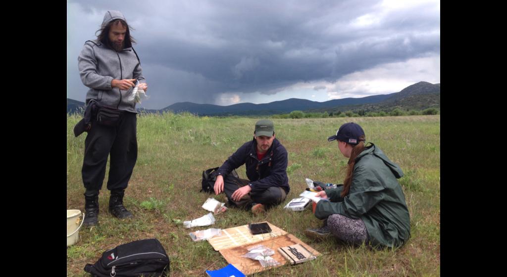Fieldwork during Norwegian Arcadia Survey, Part III