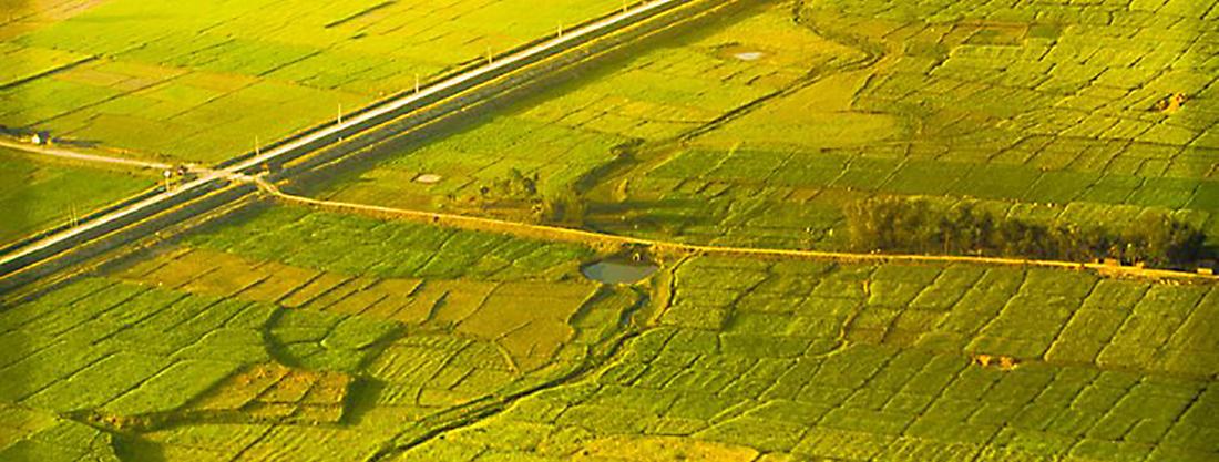 Field in Madhesh region in Nepal