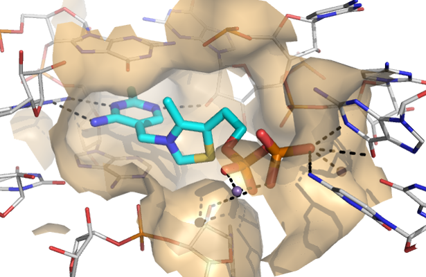 Structure-based riboswitch ligand design