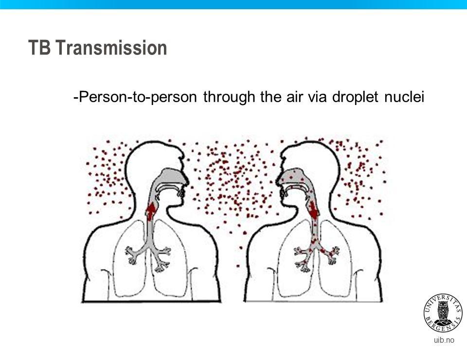 TB transmission
