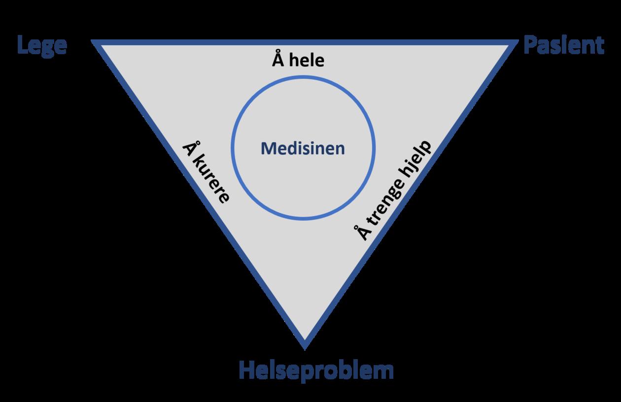 Lege - pasient - helseproblem