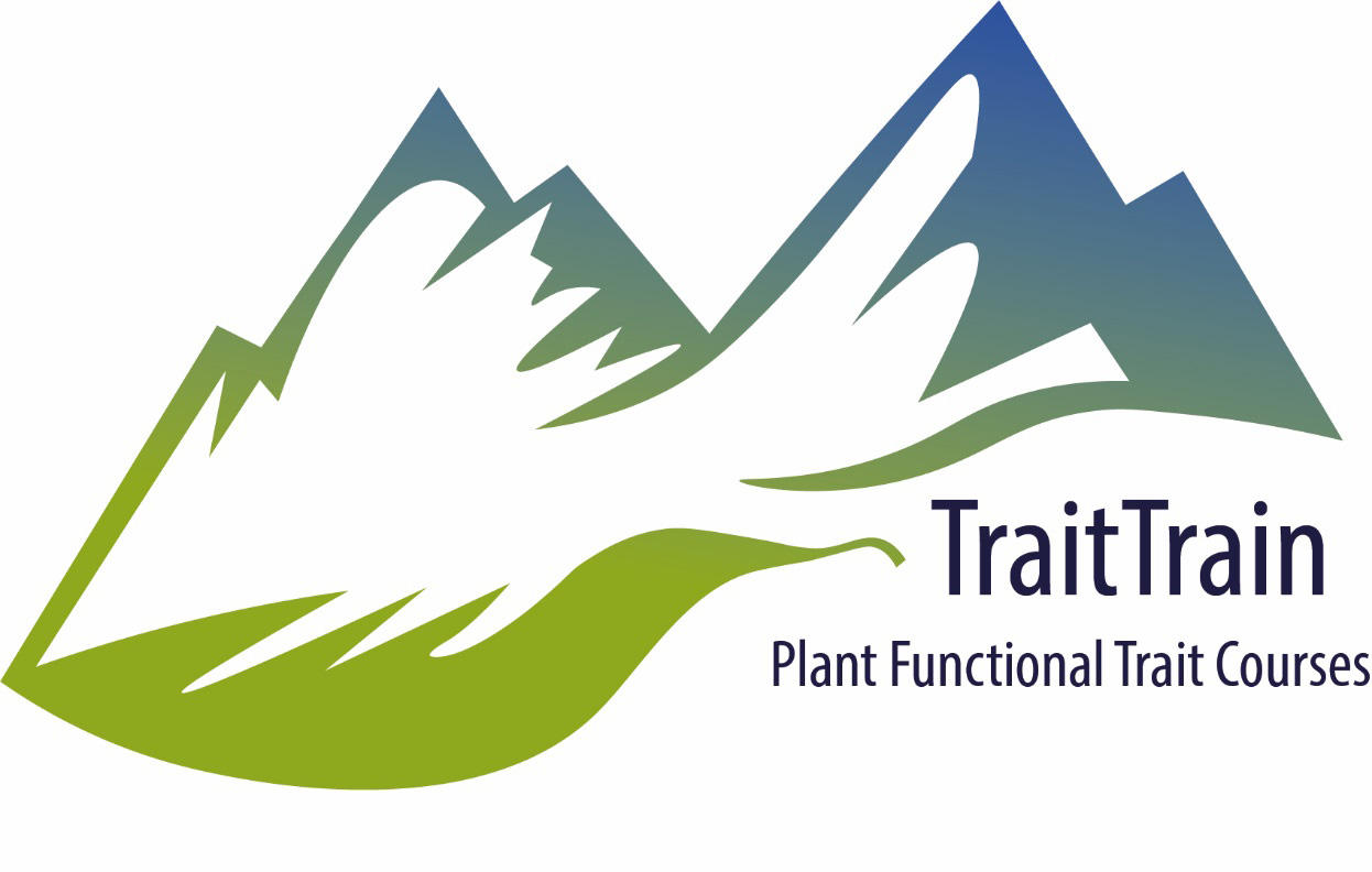 The TraitTrain logo of a stylised leaf leading up a mountain