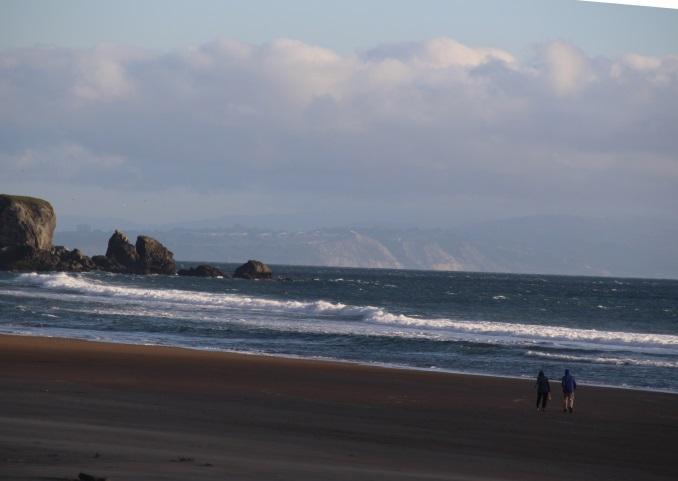 the beach at daytime