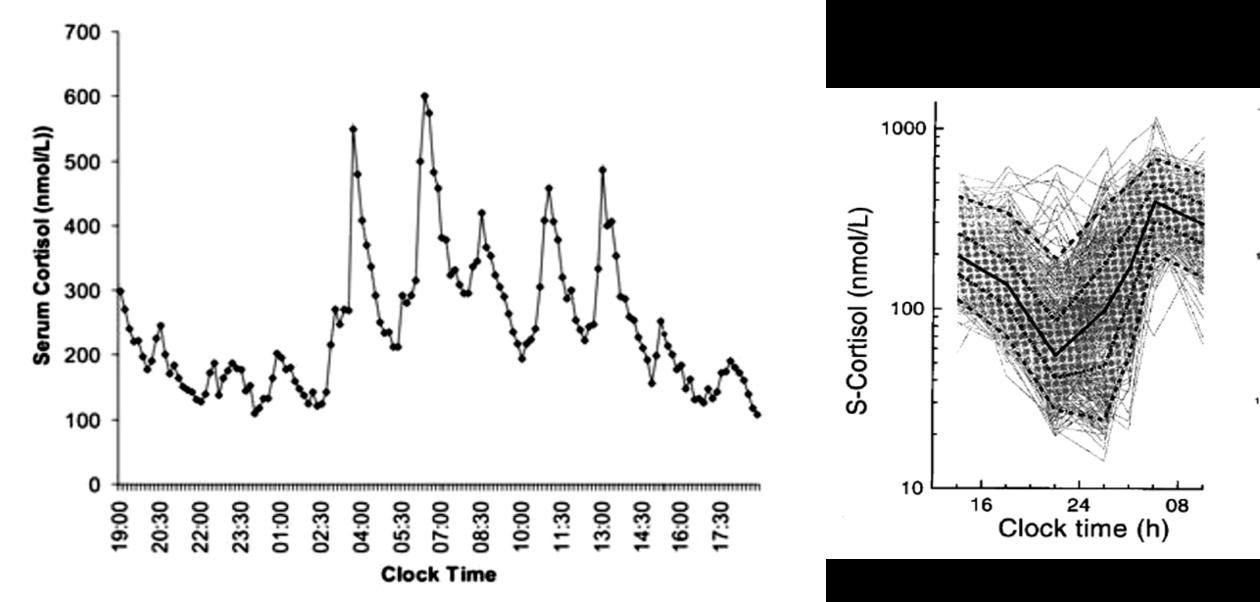 Normal circadian and ultradian rhythms