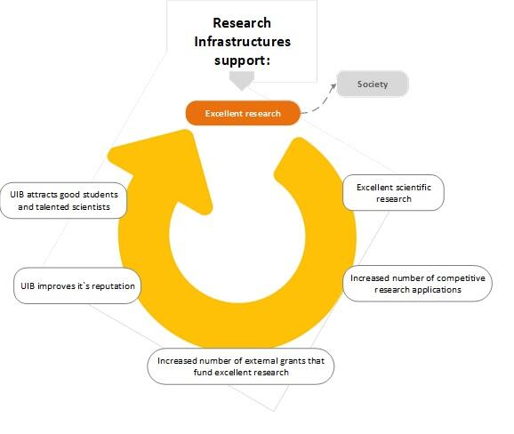 Research Infrastructure Network
