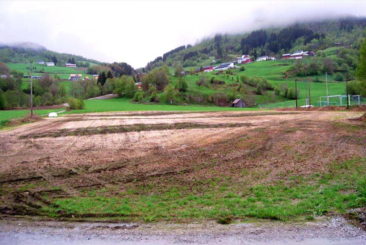 Utgravingsfelt på Sausjord før undersøkelse