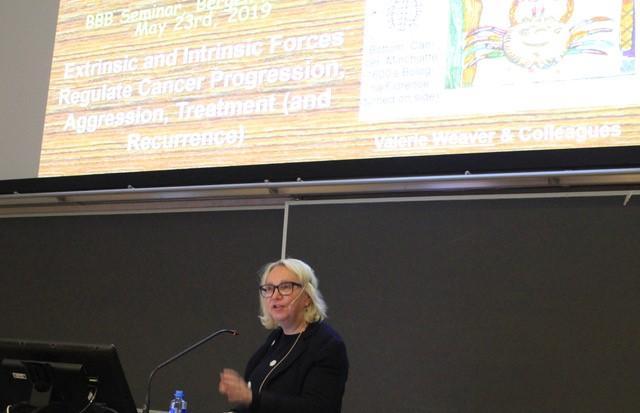 Foredragsholder ved MOTIF konferanse 2019