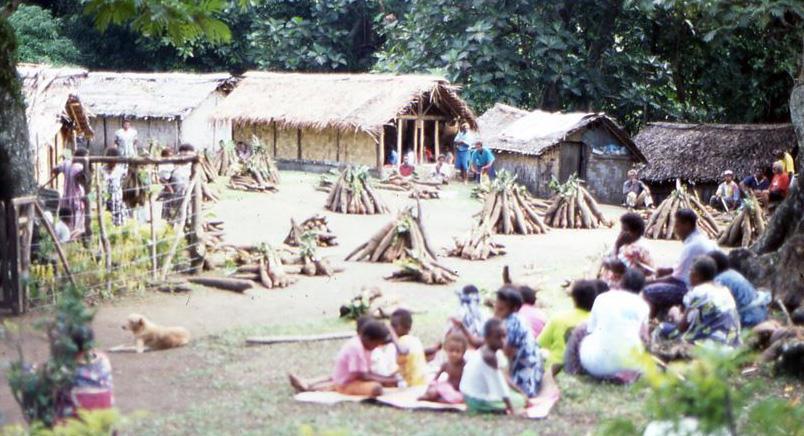 Feltbilde Vanuatu