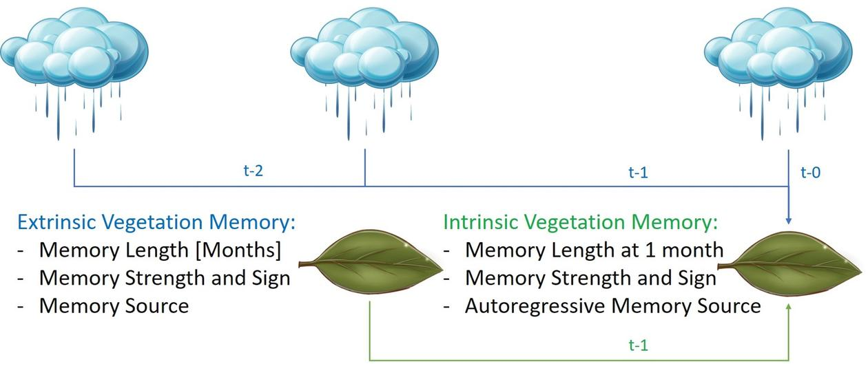 Sketch of extrinsic and intrinsic vegetation memory