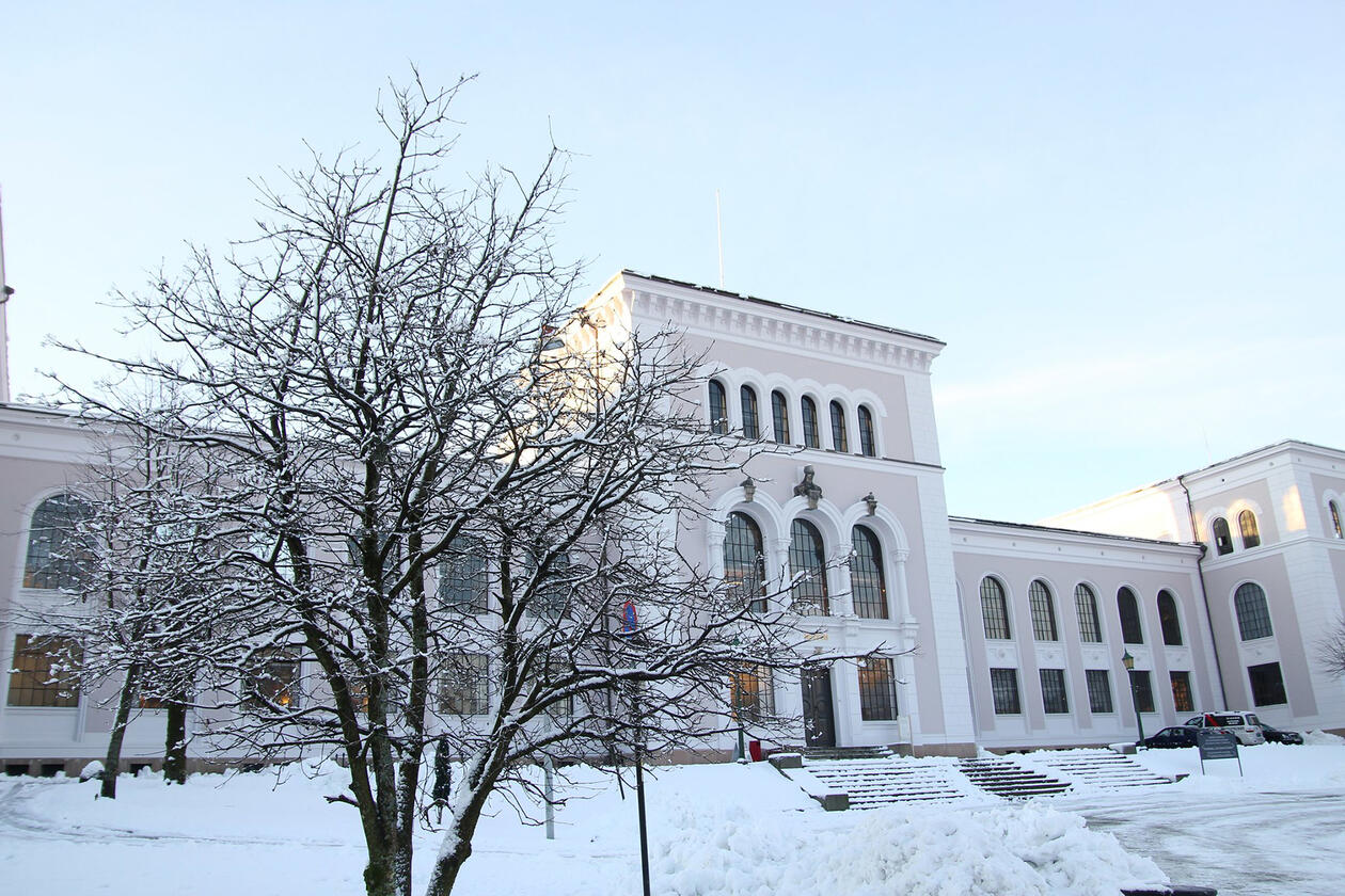 Bilde av snø over Universitetsmuseet