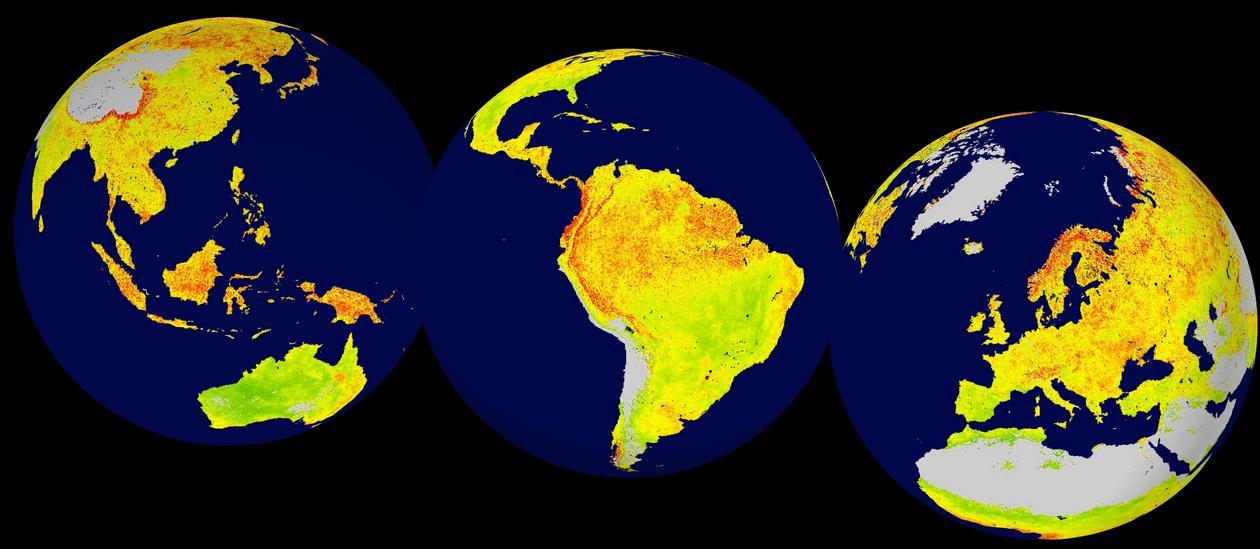 Global map of the Vegetation Sensitivity Index (VSI).