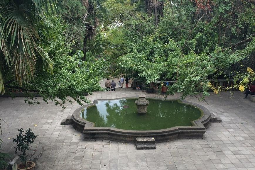 Fontene i park