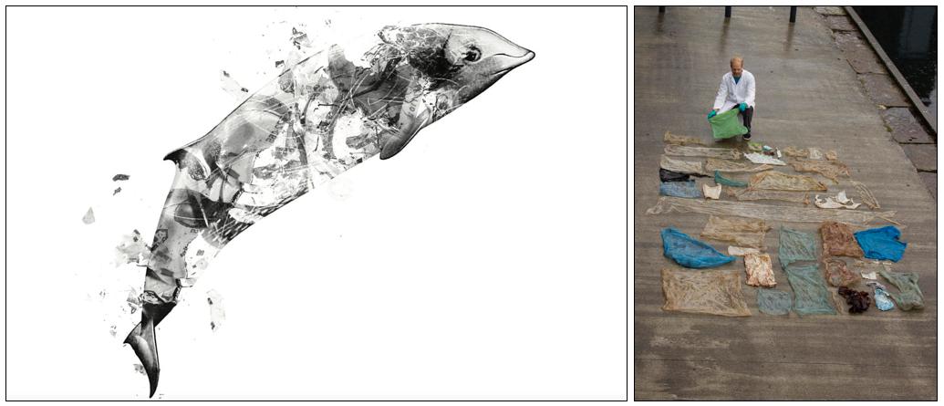 Miljø, plasthvalen: Hvordan skal vi bevare miljøet vårt på best mulig måte?