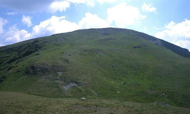 Regnprøver fra det walisiske fjellet Plynlimon viste økt konsentrasjon av selen i månedene april-juni, da oppblomstringen av planteplankton i Nord-Atlanteren er på sitt sterkeste. Plynlimon er utspring for den lengste britiske elven, Severn. (Foto: Richar