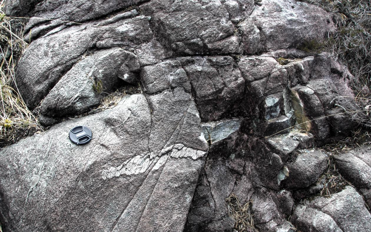 Photograph of a an outcrop on the island of Holsnøy, north of Bergen. The light grey sheet of rock on the bottom right hand side of the camera lense cap is a so-called pseudotachylite, which was generated by an earthquake at more than 60 km depth. Due to