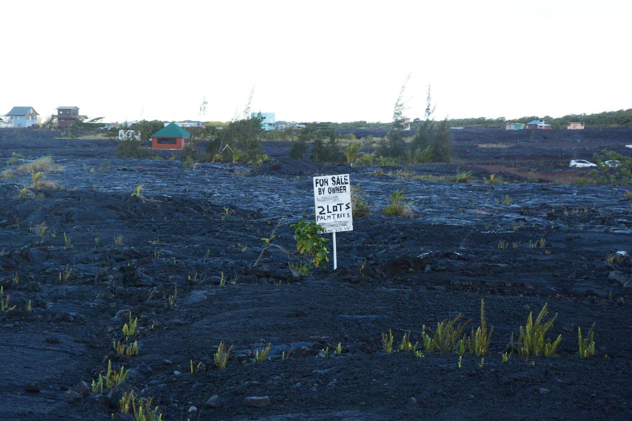 Pahoa, 2014. Bilde av lavaslette med til-sals skilt