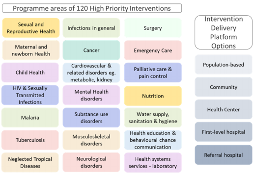 Overview of programme areas for high priority interventions