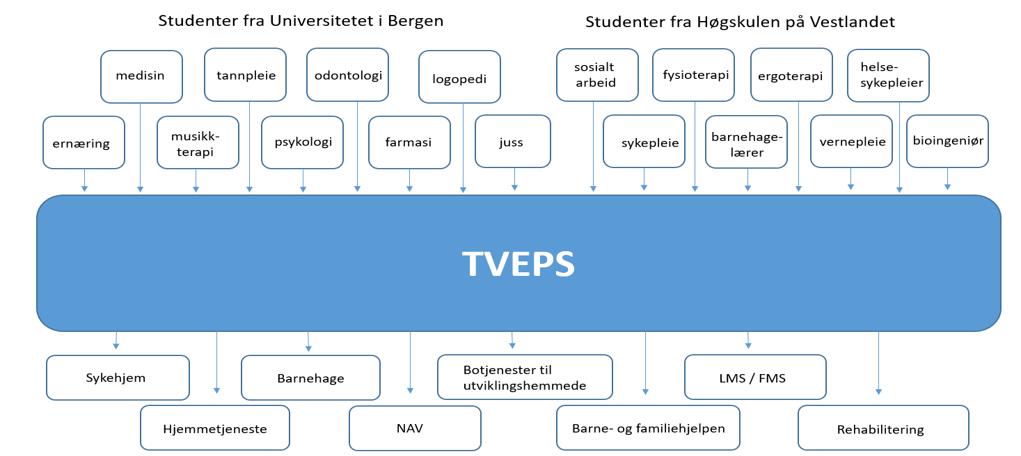 TVEPS organisation