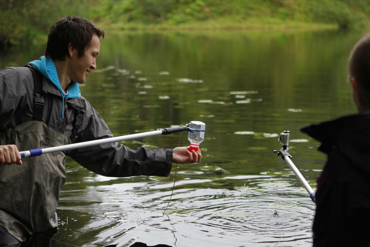 BIO300 fieldwork 2012