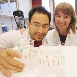 Studentforskere