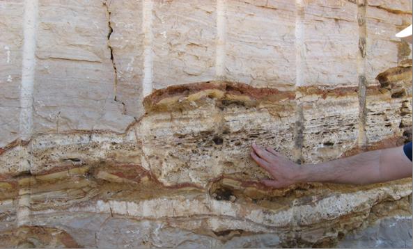 Carbonate rock outcrop.