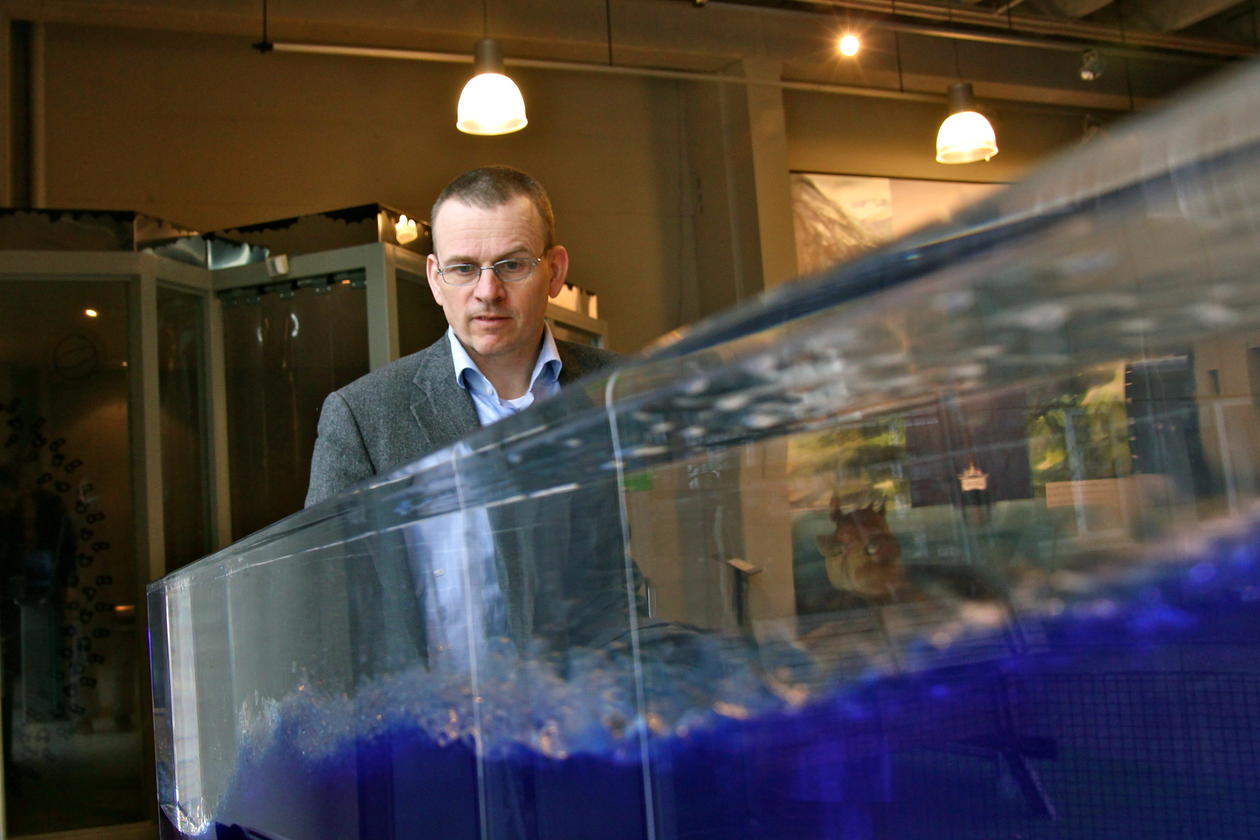 Visedekan Helge K. Dahle vil visa fram MatNat si forsking på fornybar energi...