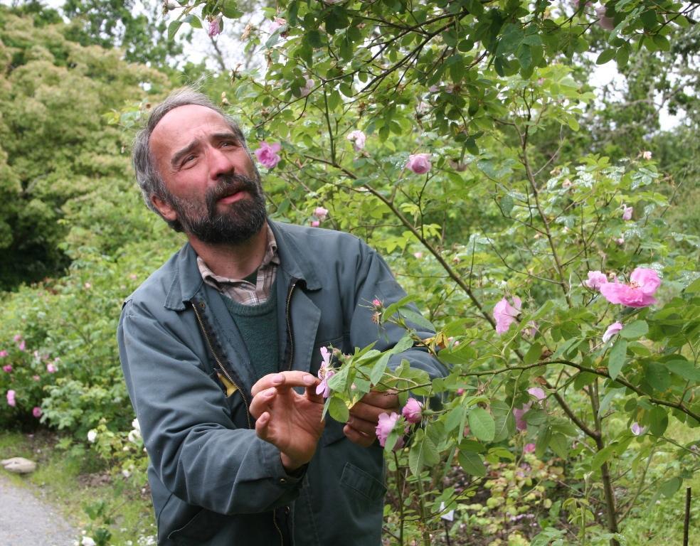 Rosegartnar Daniel Ducrocq fortel gjerne om rosene om du treffer ham i...