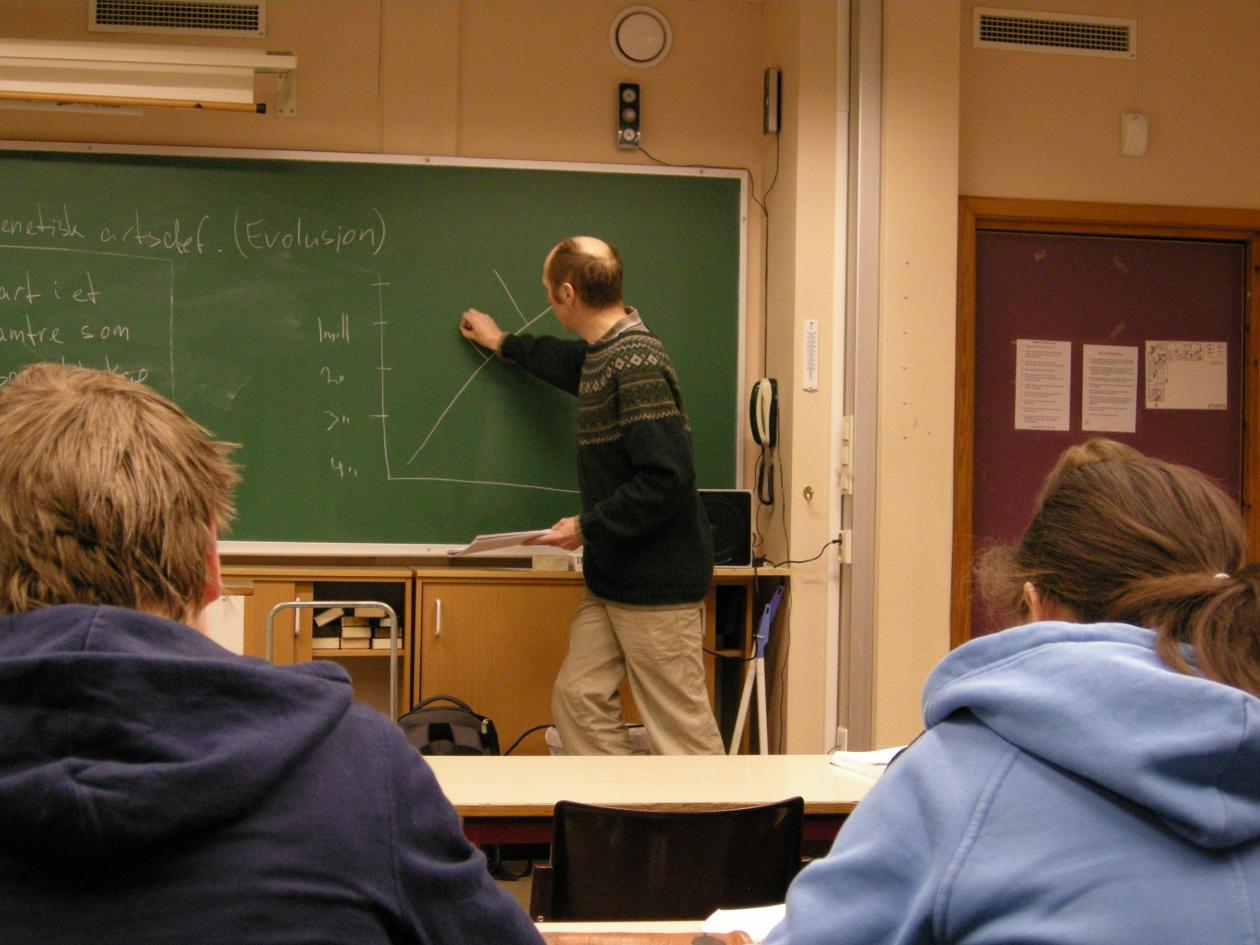 Bilde av lærer som skriver på tavlen