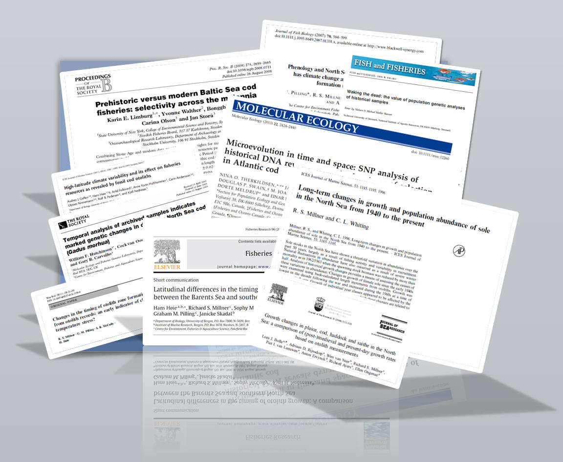 Selection of publications utilizing historical otolith collections to study...