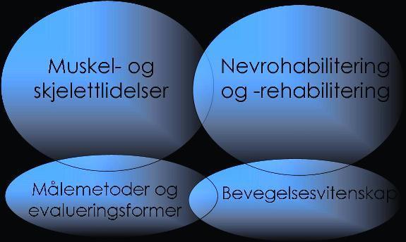 Figur av hovedområdene våre forforskning