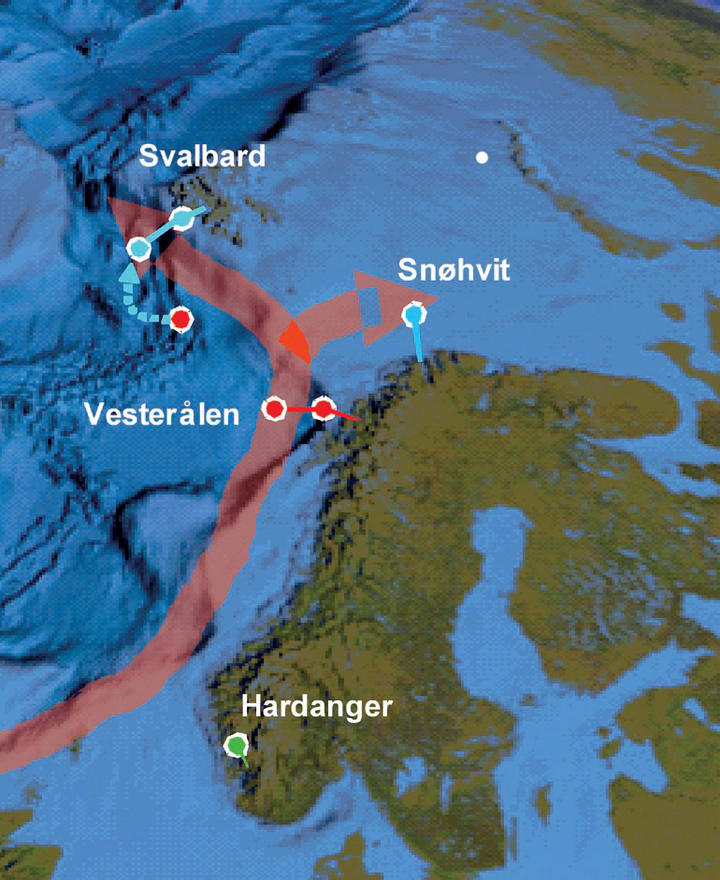 COAST – CONTINENTAL SHELF – DEEP SEA: The cable-based ocean observatory will...