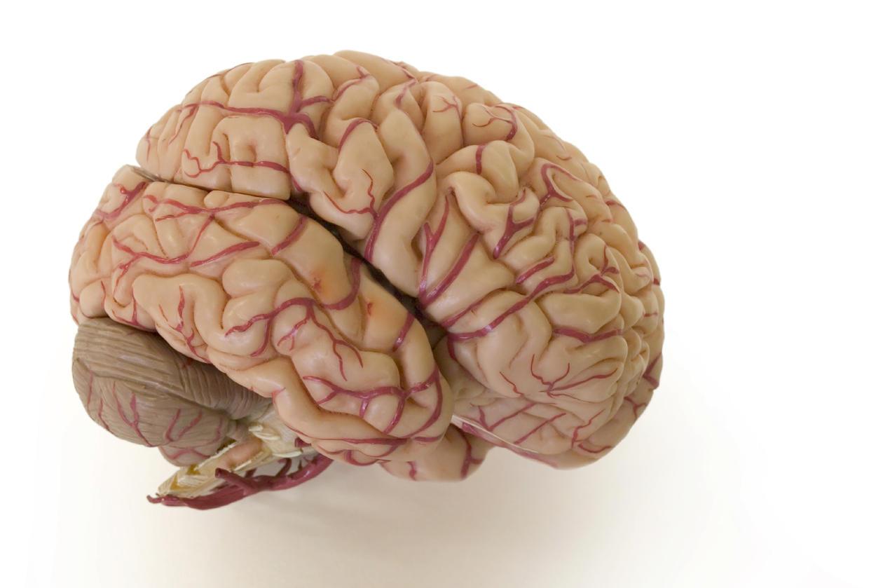 De fremre hjernehalvdelene får nedsatt funksjon ved forholdsvis lav promille