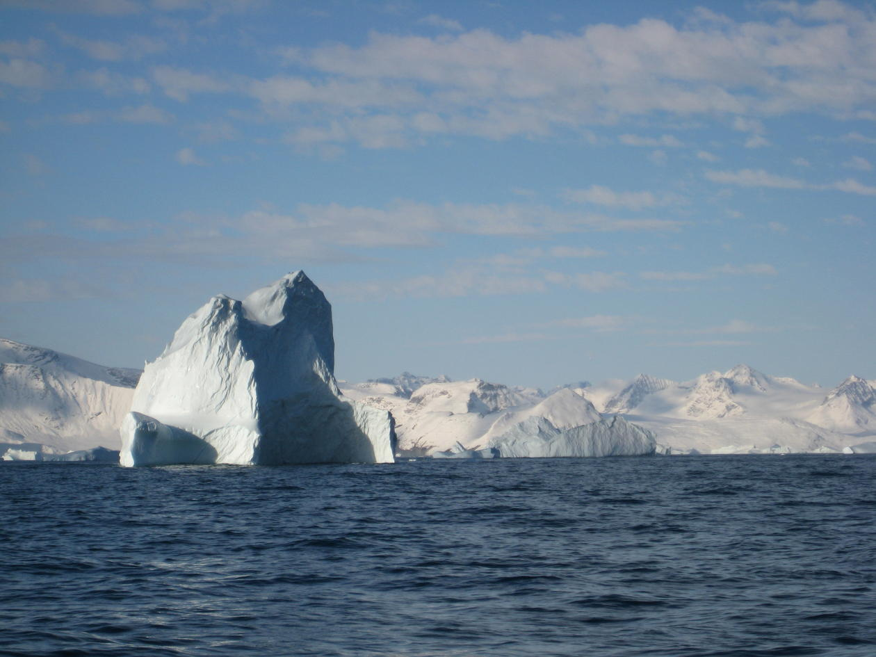 Icebergs around Greenland