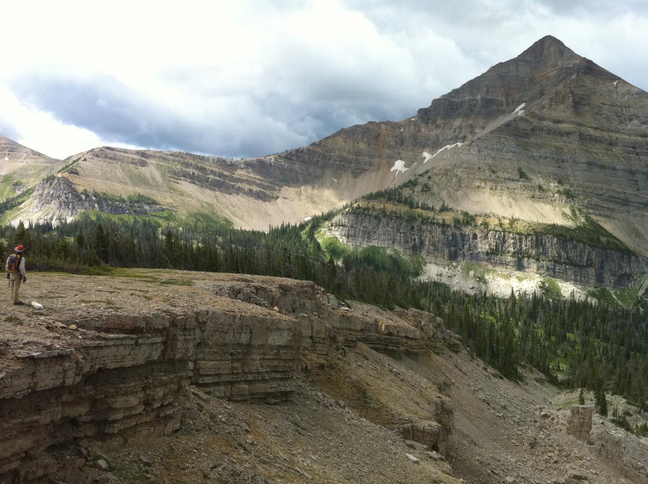 En tykk lagrekke av marine sedimentære bergarter i delstaten Montana. ...