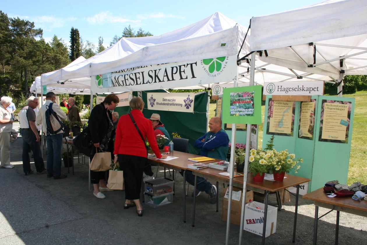 Lokale foreninger presenterer sitt arbeide i egne boder.