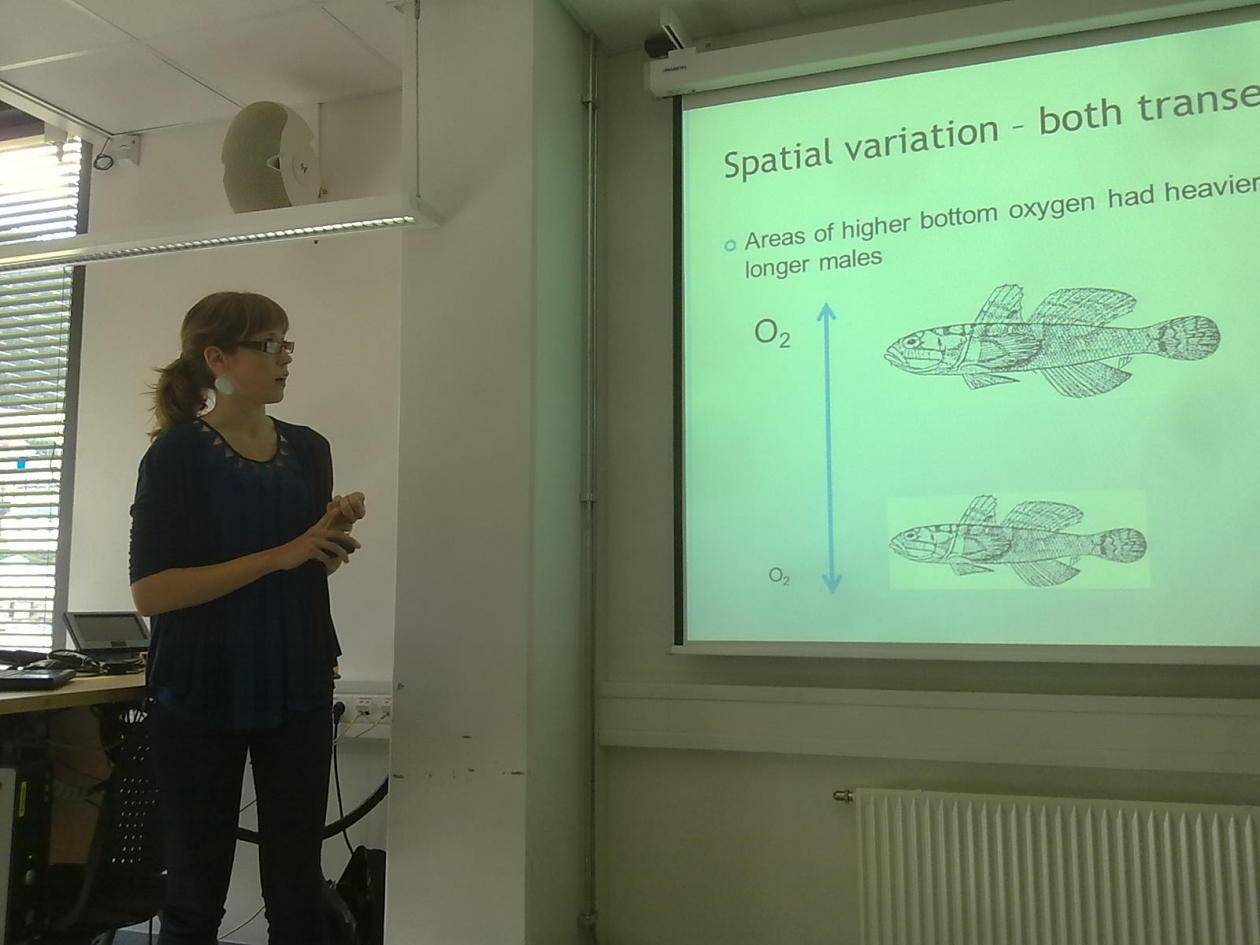 Maria Larsen Seivåg presenting her Master thesis on bearded goby