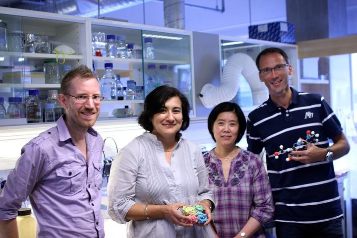 Aurora Martinez and her research group work to find cures for rare, genetic...