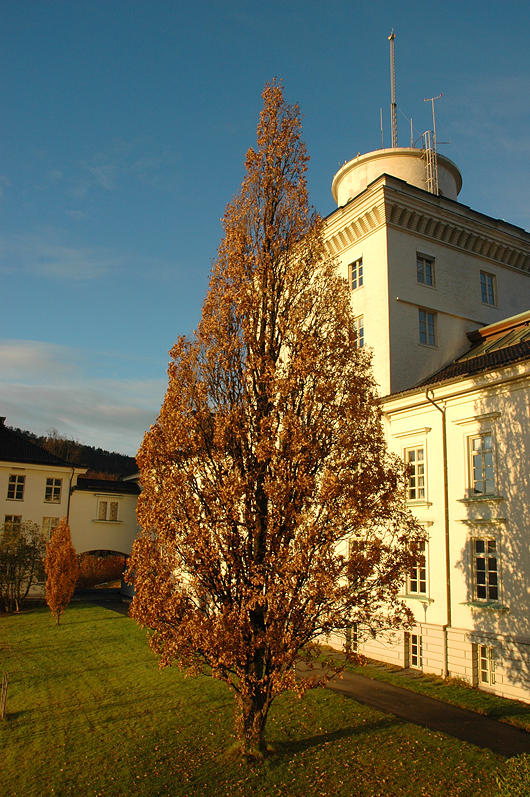 The Geophysical institute building hosts both the institute and the Norwegian...