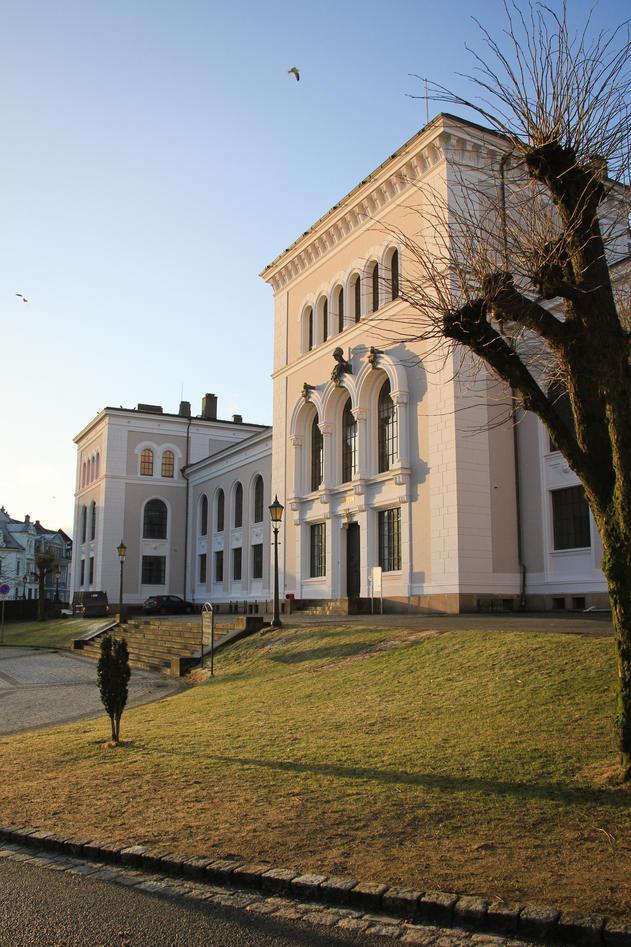 Universitetsmuseet, De naturhistoriske samlinger, fra side ved inngangsparti....