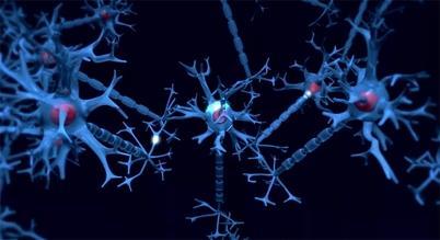 Nerveceller sender signaler til hverandre gjennom synapsene. Det vet vi en...