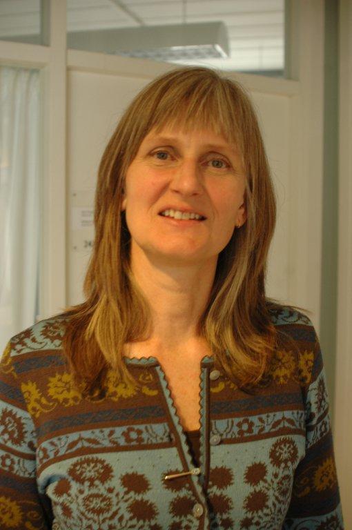 Nina Øyen, professor ved Institutt for global helse og samfunnsmedisin.