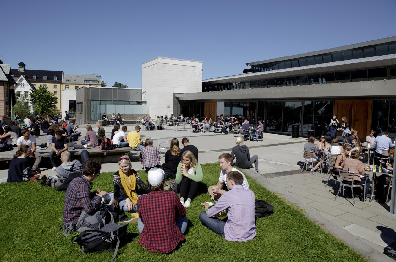 Stadig flere søker seg til realfagsutdanningen ved Universitetet i Bergen