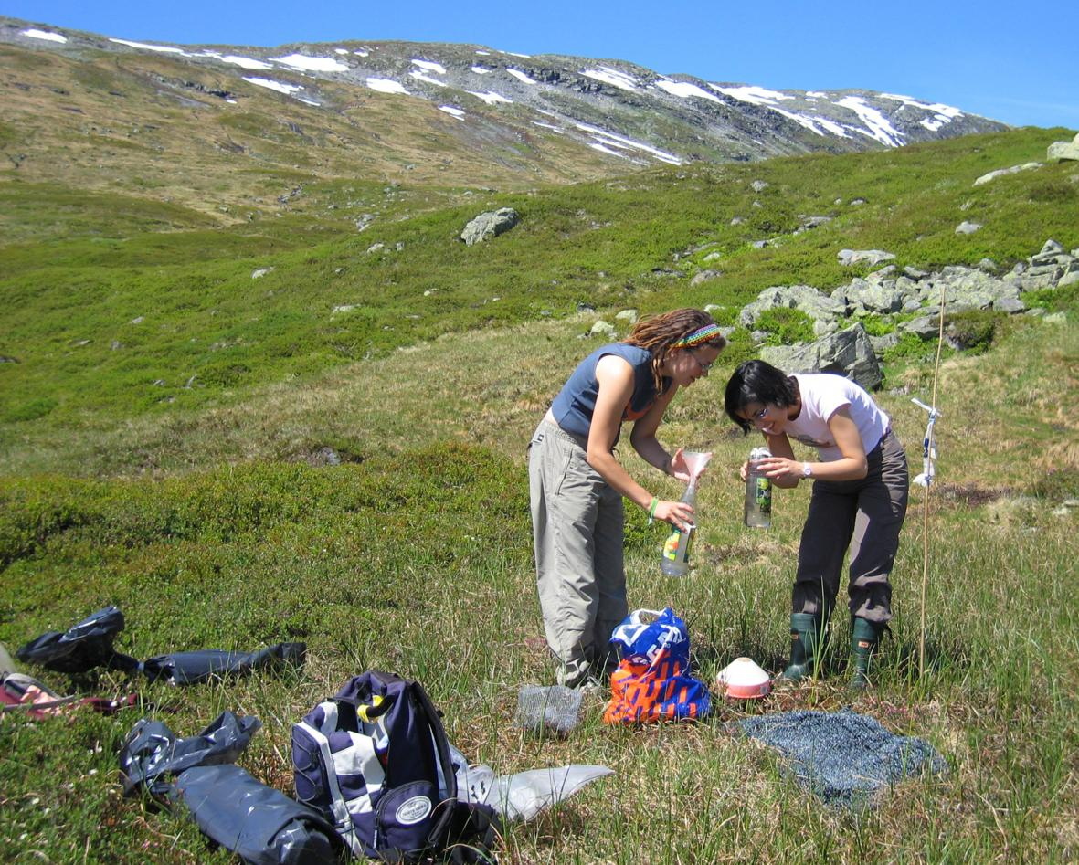 Emptying the pollen and macrofossil traps