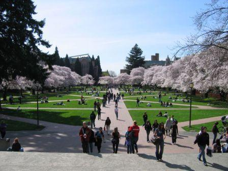 Campus at University of Washington