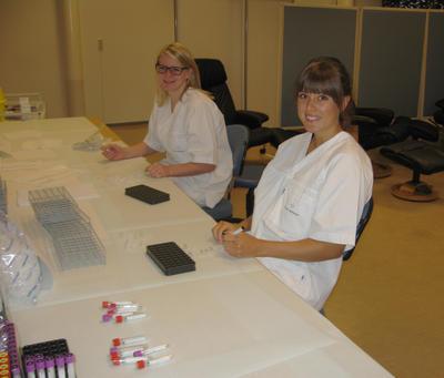 Stipendiat Vikøren og masterstudent Vildmyren merkar eppendorfrøyr til fordeling av blodprøvar
