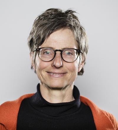 Professor Kari Klanderud
