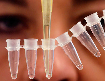 Bachelorprogram i molekylærbiologi