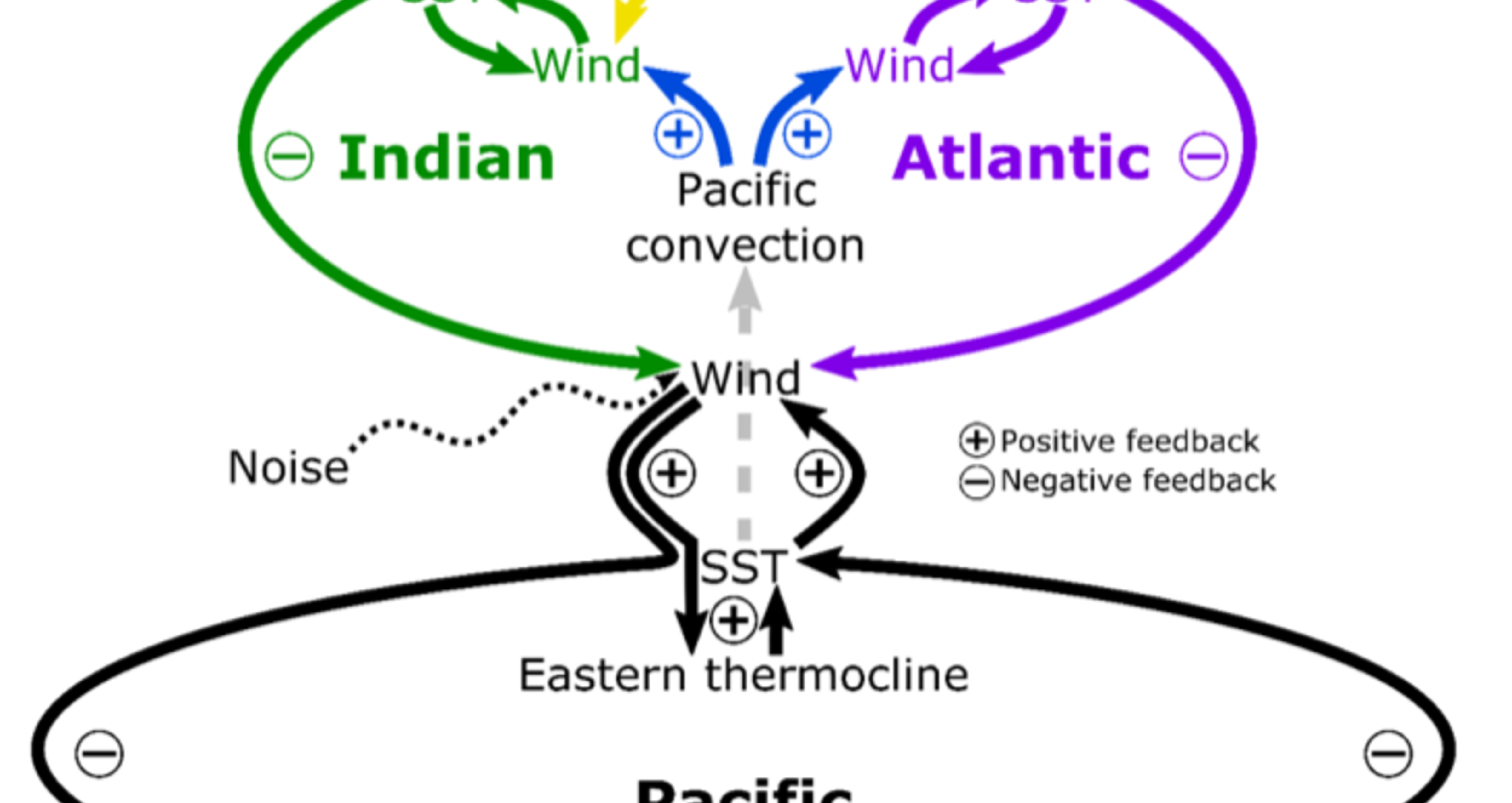 feedback_loops_pacific_atlantic_indian_oceans
